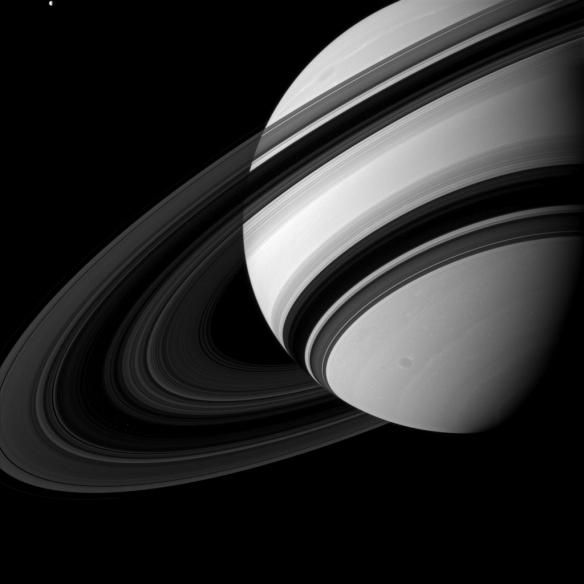 Tiny_Tethys