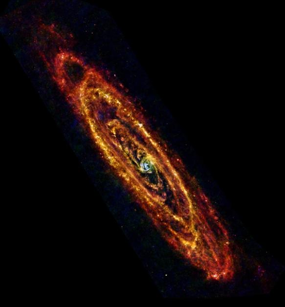 Cool_Andromeda