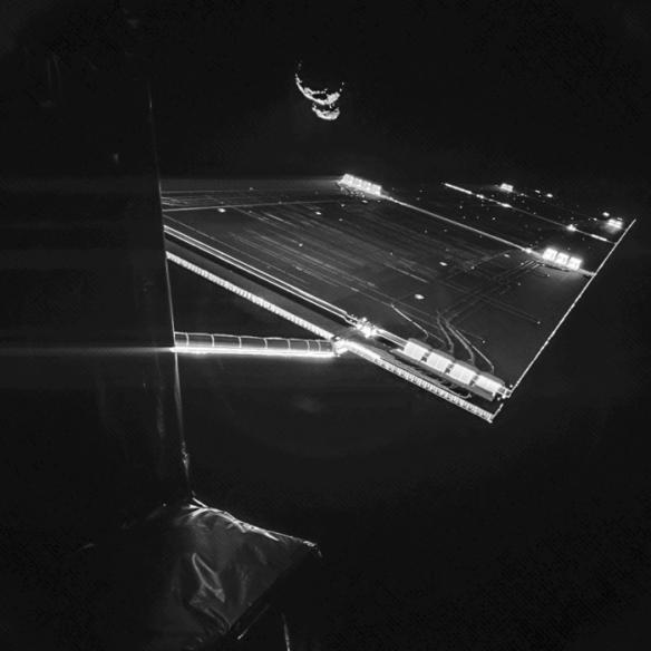 Rosetta_selfie