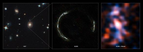 SDP_81 Einstein Ring