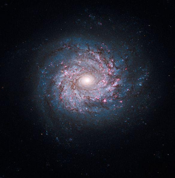NGC_3982