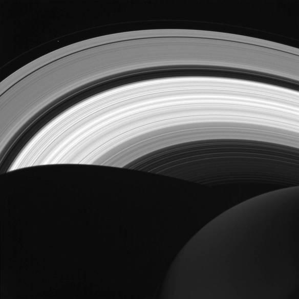 rings-in-daylight